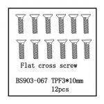 Flat Cross Screw(TPF3*10) 12 PCS